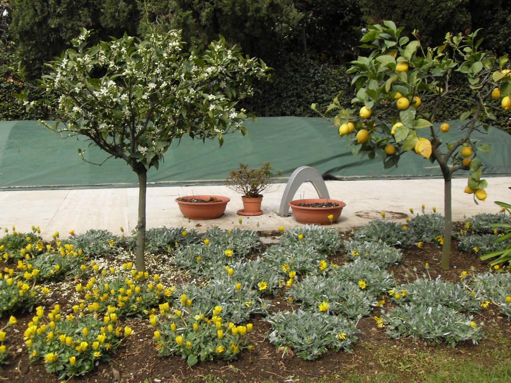 Progettazione giardini marco scagliarini garden designer for Corso progettazione giardini